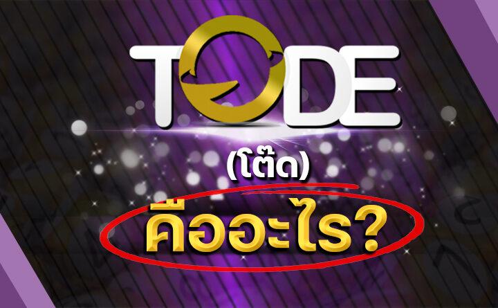 Tode-(โต๊ด)-คืออะไร